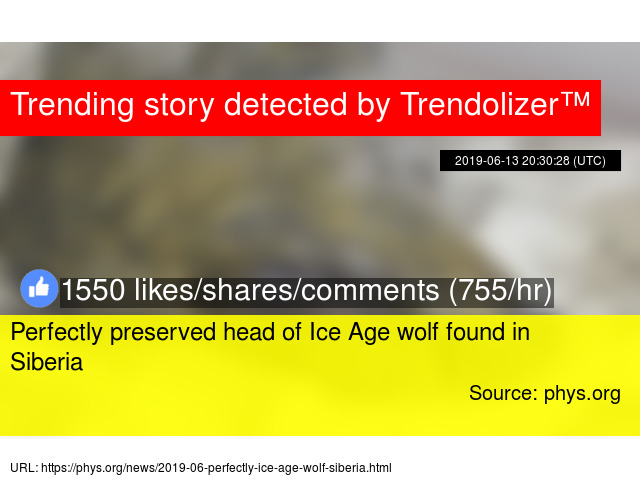 dc07d1f4f6ae2 Perfectly preserved head of Ice Age wolf found in Siberia - Stats